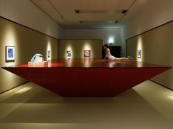 Vista de la Exposición en Kunsthalle Wien.